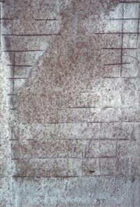 Reticolo-di-tondini-di-ferro-nel-cemento.OK_